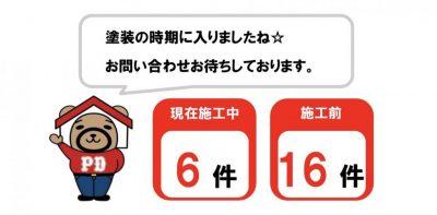S__1250921811.jpg